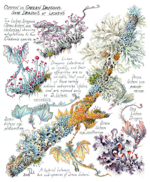 Lichen Dragons